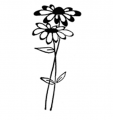 Flower Girl Farm